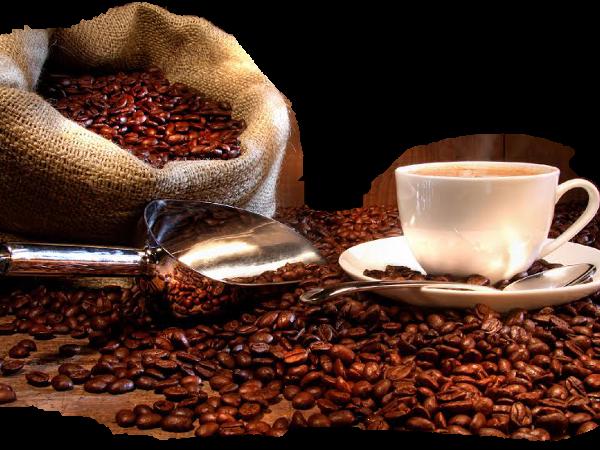 Cafés pur Arabica & Assemblages