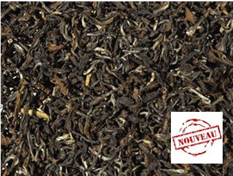 Oolong Fancy 22484A