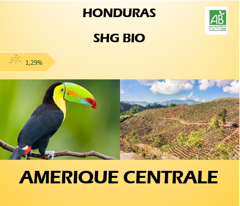 HondurasBIO